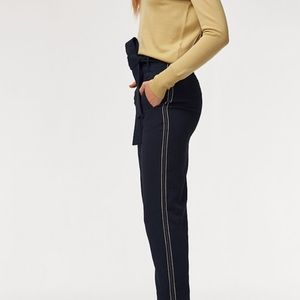 NWT Aritzia Jallade Pant in Sky Captain Color